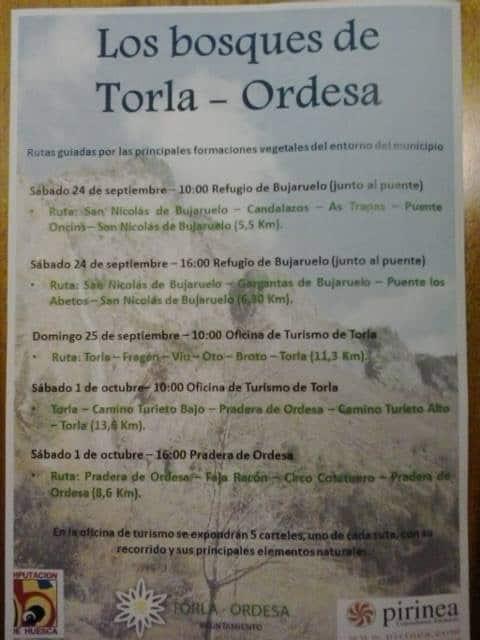 Ordesa los bosques de torla gente con ganas de vivir for Oficina turismo torla