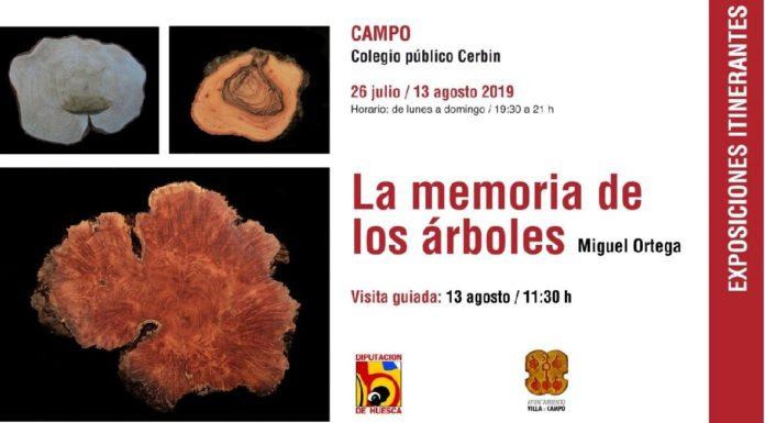 Campo. Cartel de la exposición