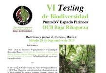 Biescas de Obarra VI Testing Biescas 28-9-2019