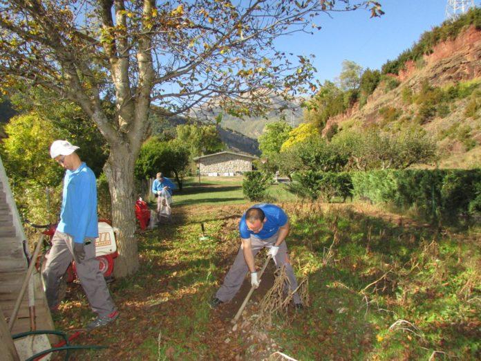 Usuarios de El Remós realizando trabajos agrícolas (Foto: El Remós)