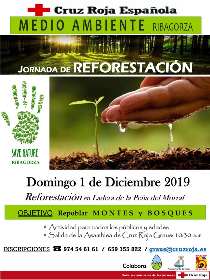 Graus Jornada de reforestación
