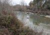Tramo del río en que se va a construir el canal de aguas bravas (Foto: Angel Gayúbar))